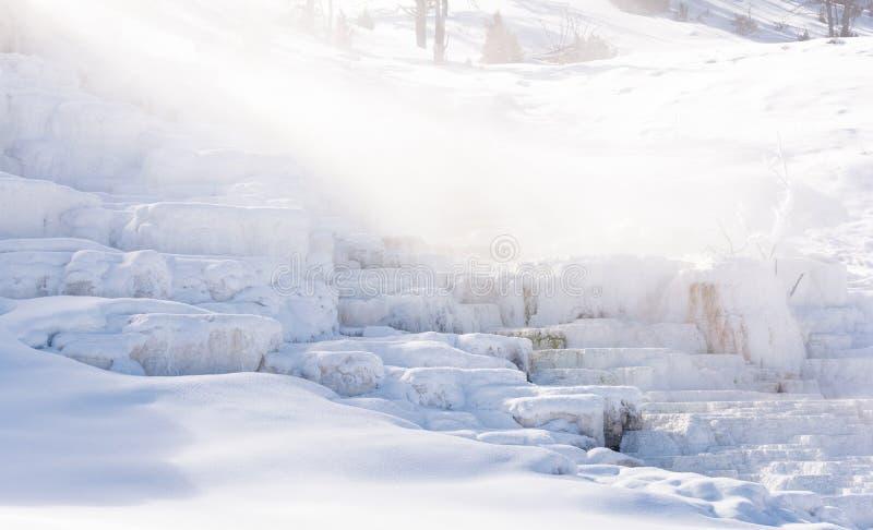 Śnieg pokrywał Mamutowe Gorące wiosny w Yellowstone parku narodowym zdjęcia stock
