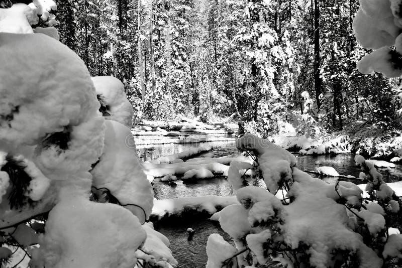 Śnieg rama obraz stock