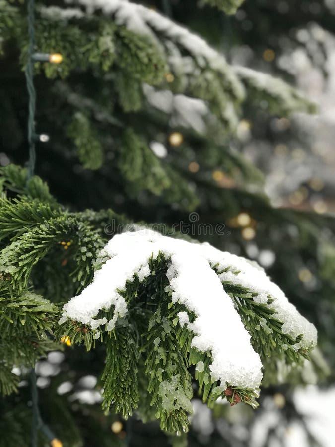 Śnieg w Londyn jest cudem zdjęcia stock