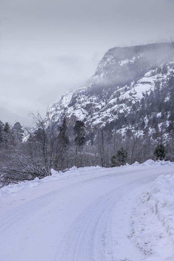 Śnieg Zakrywać drogi w Skalistej góry parku narodowym obraz stock