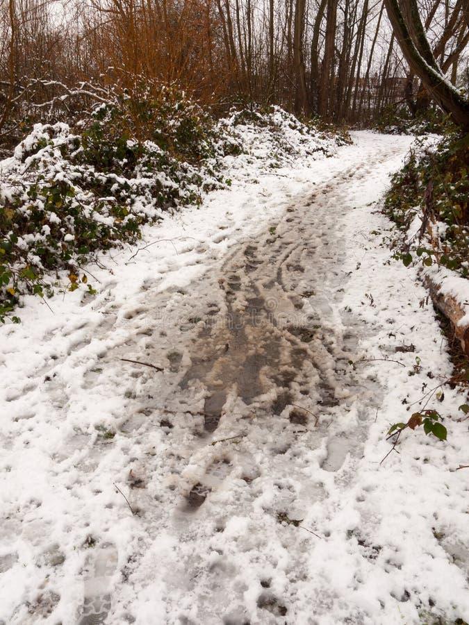 śnieg zakrywał brudnego lasowej ścieżki podłogowego przejście na zewnątrz tekstury zdjęcia royalty free