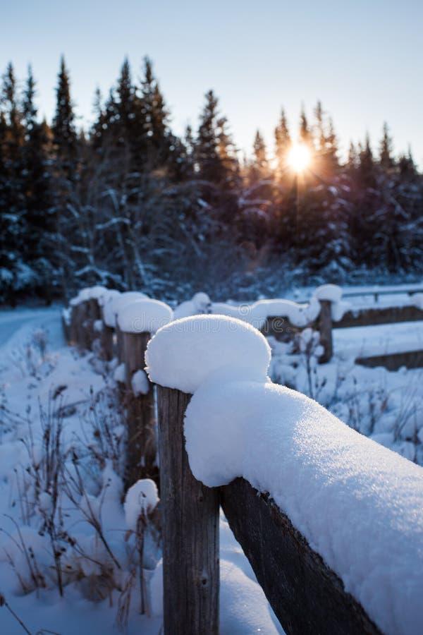 Śnieg zakrywał drewnianego ogrodzenie na zimnym zimy ` s dniu zdjęcie royalty free