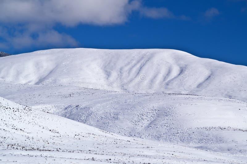 Śnieg Zakrywał Wzgórza fotografia stock