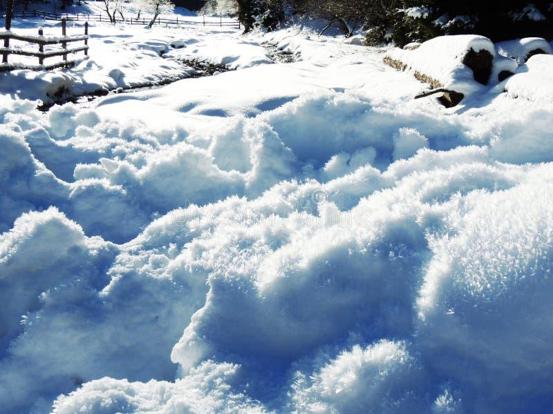 śnieg, zima, śnieg, zimno, mróz, natura, góra, biel, kryształ, płatek śniegu fotografia royalty free