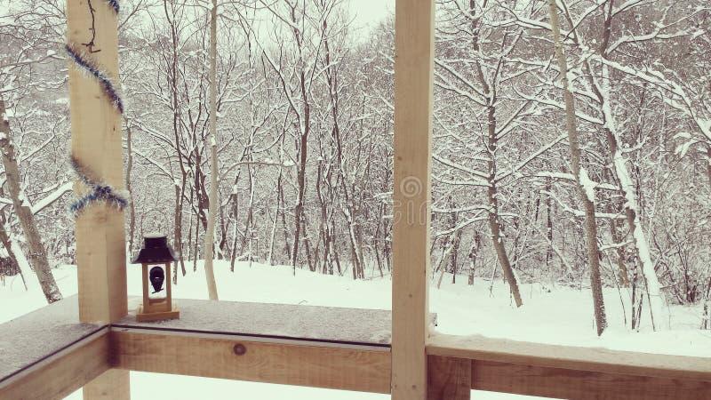 Śnieg, zimny dzień obraz stock
