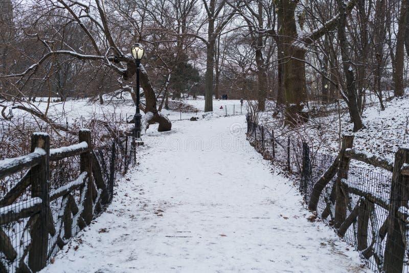 Śniegu most w nowym York, centrala park obraz royalty free