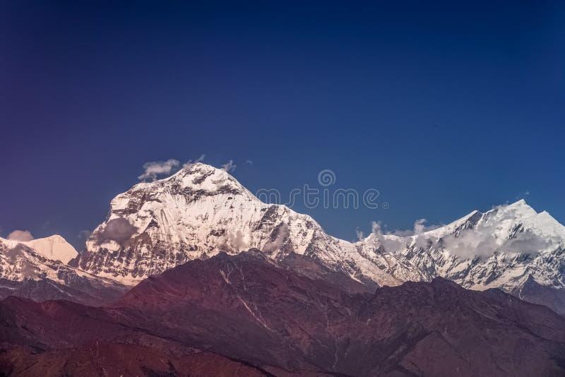 Śniegu szczyt Dhaulagiri góra przy zmierzchem w himalajach w Nepal zdjęcia stock