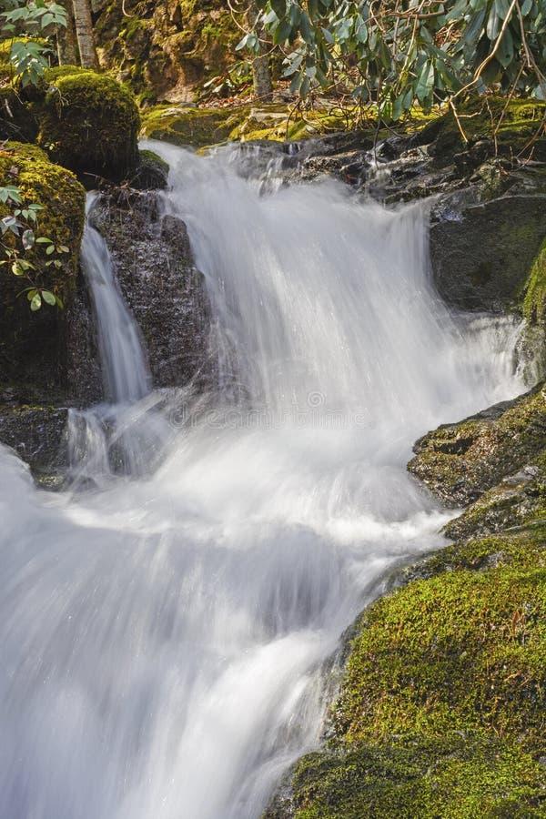 Śpieszyć się kaskadę w górach obrazy royalty free