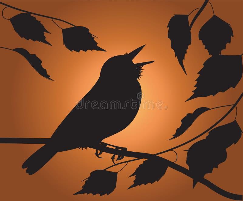 Śpiewacki ptak royalty ilustracja