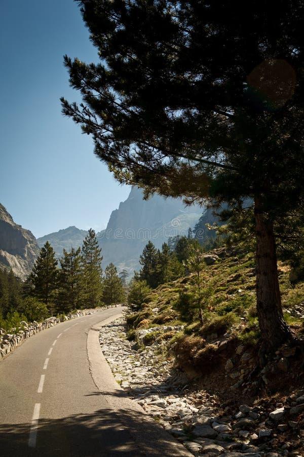 Śródlądowy Corsica, prześwietna Restonica dolina fotografia stock