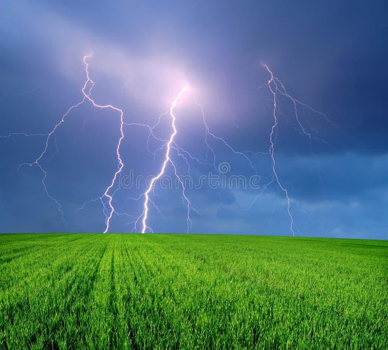 śródpolna błyskawicowa burza zdjęcia stock
