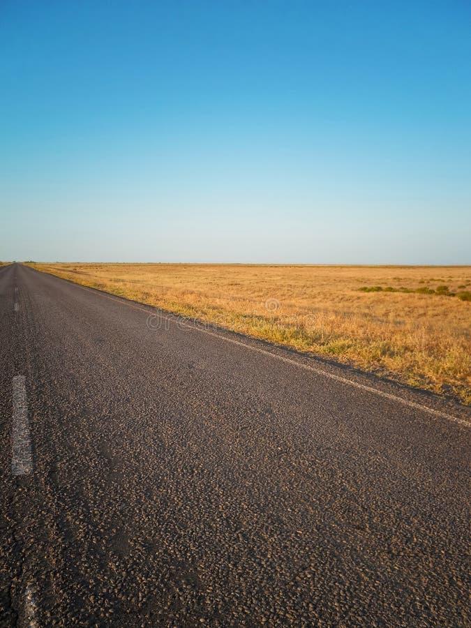 śródpolna droga zdjęcia stock
