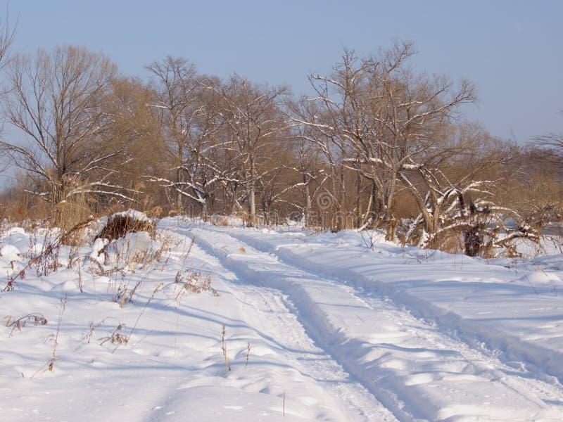 Śródpolna droga w zimie zdjęcie royalty free