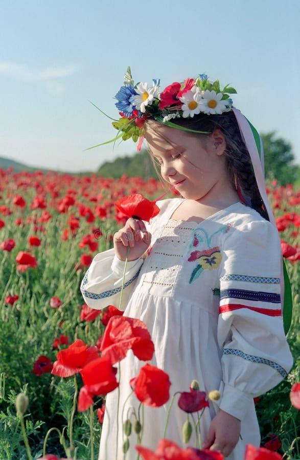 śródpolnej dziewczyny mała makowa czerwień obrazy royalty free