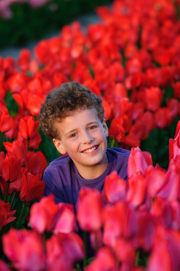śródpolni chłopiec tulipany obrazy royalty free