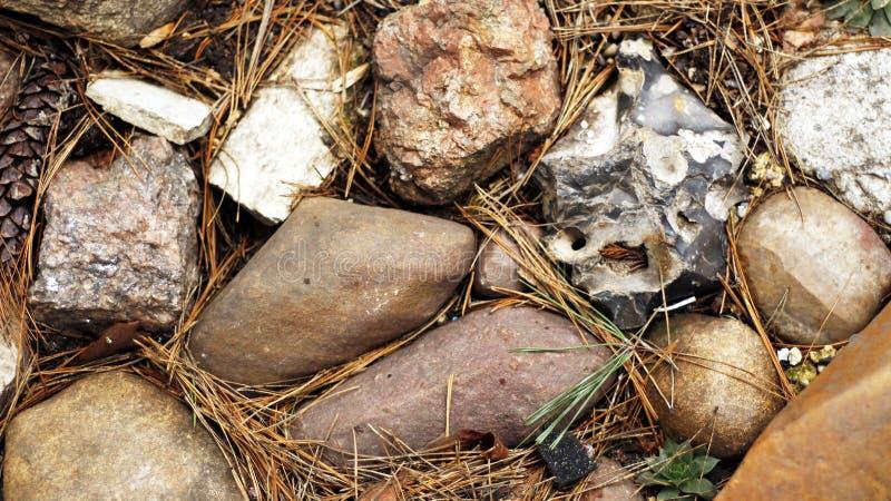 Śródpolni kamienie różnorodni kształty w grupie fotografia stock