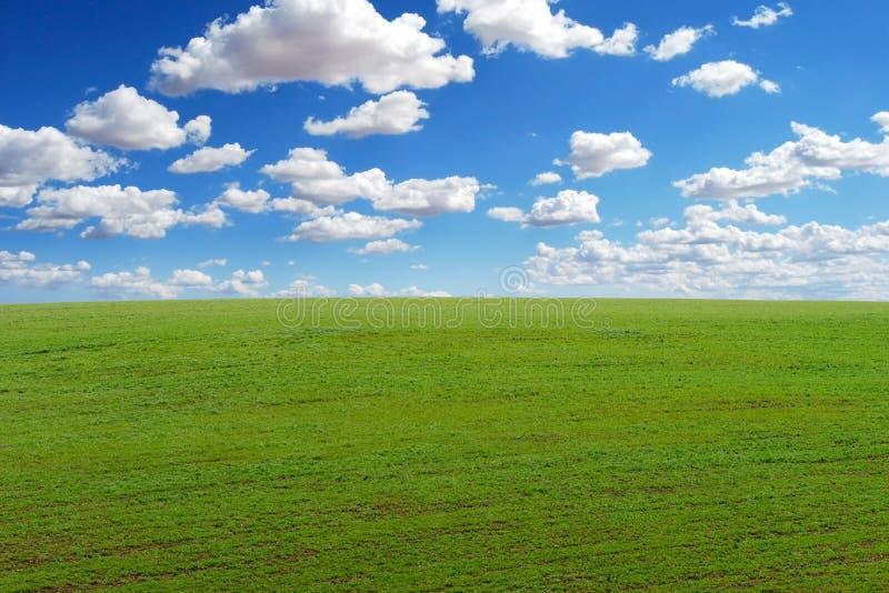 Śródpolny łąki chmury nieba tło zdjęcia stock