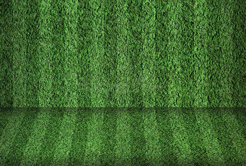 śródpolny futbol zdjęcie stock