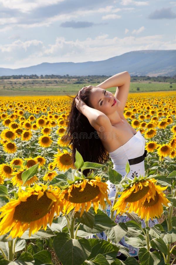 śródpolny relaksujący słonecznik fotografia stock