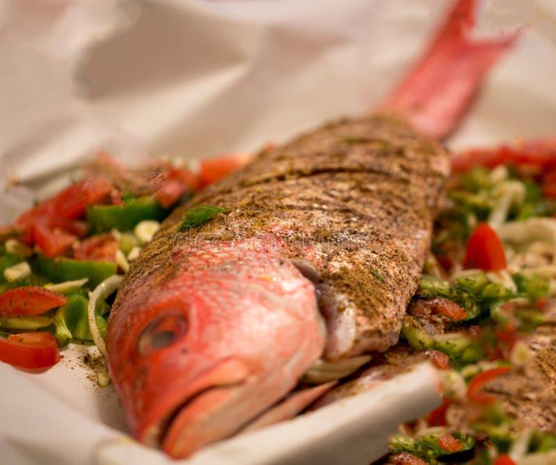 Śródziemnomorska Cała czerwony snapper ryba fotografia stock