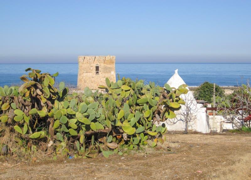 Śródziemnomorski krajobraz w Puglia z morzem, kłującymi bonkretami, trullo i stary wierza, fotografia stock