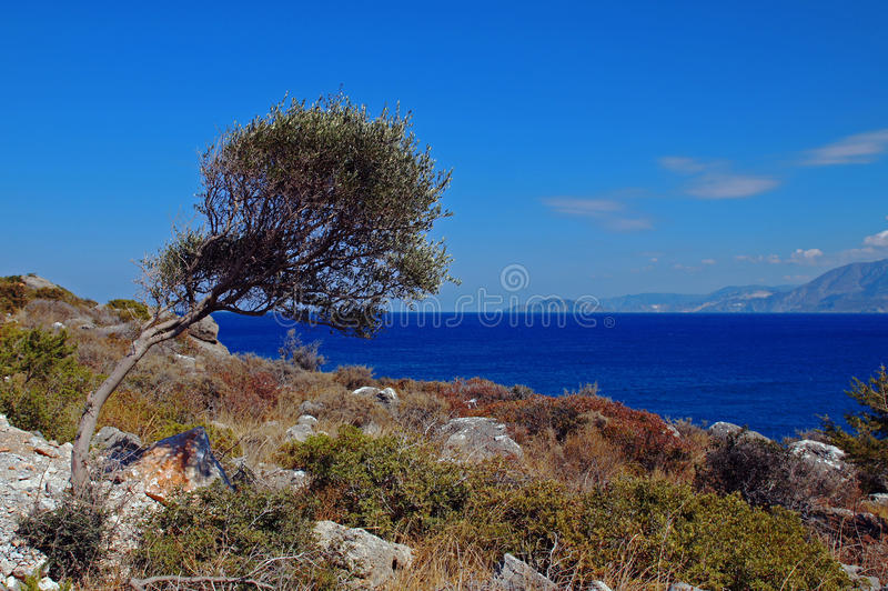 Śródziemnomorski seashore obrazy stock