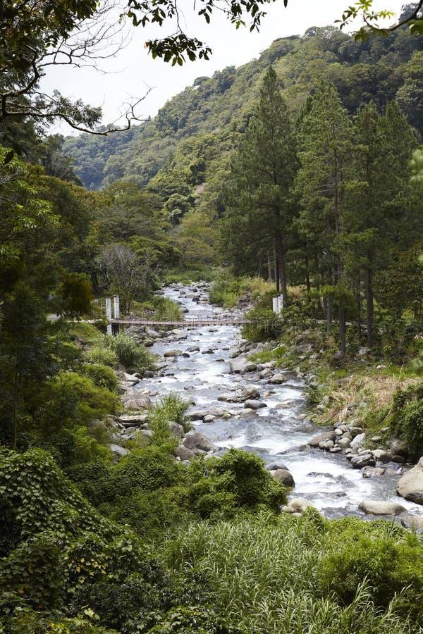 Średniogórza, Boquete, Chiriqui, Panama obrazy royalty free