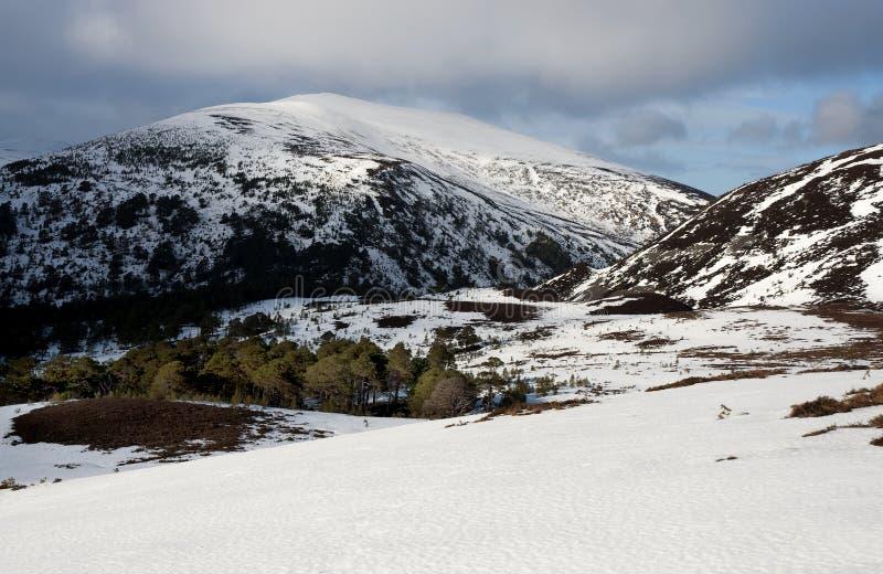 średniogórza Scotland zdjęcia royalty free