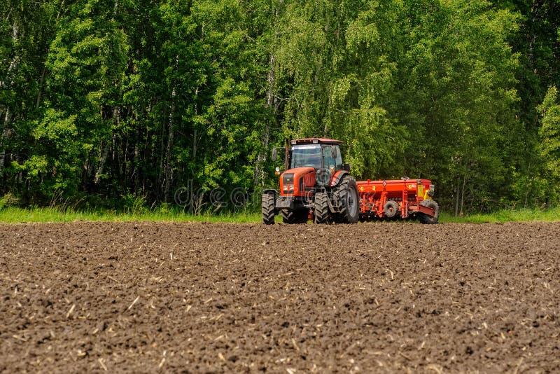 Średniorolne obsiewanie uprawy na ciągniku przy polem Rosja fotografia royalty free