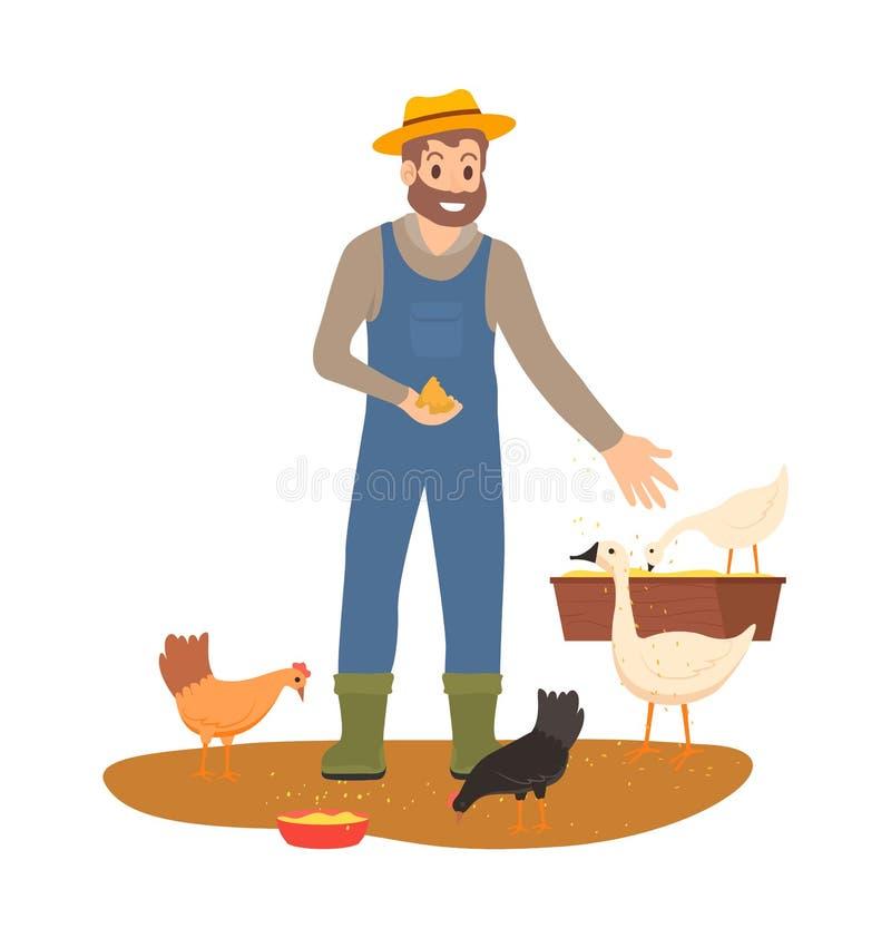 Średniorolni Żywieniowi kurczaki i gąski na Rolnym wektorze royalty ilustracja