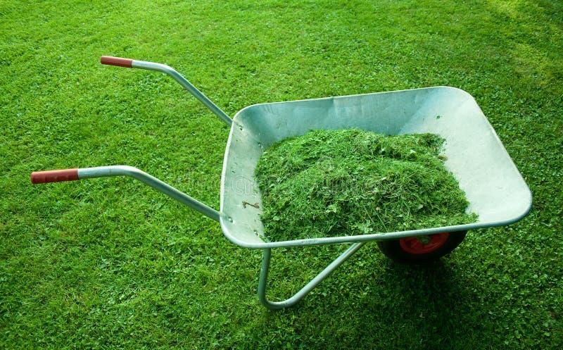 średniorolny trawy zieleni narzędzie zdjęcia stock