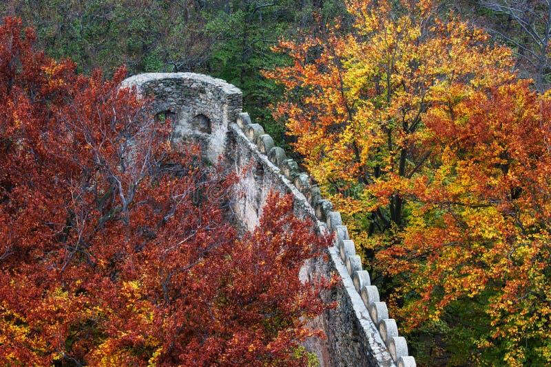 Średniowieczny kasztel ściany Battlement w jesień lesie obraz royalty free
