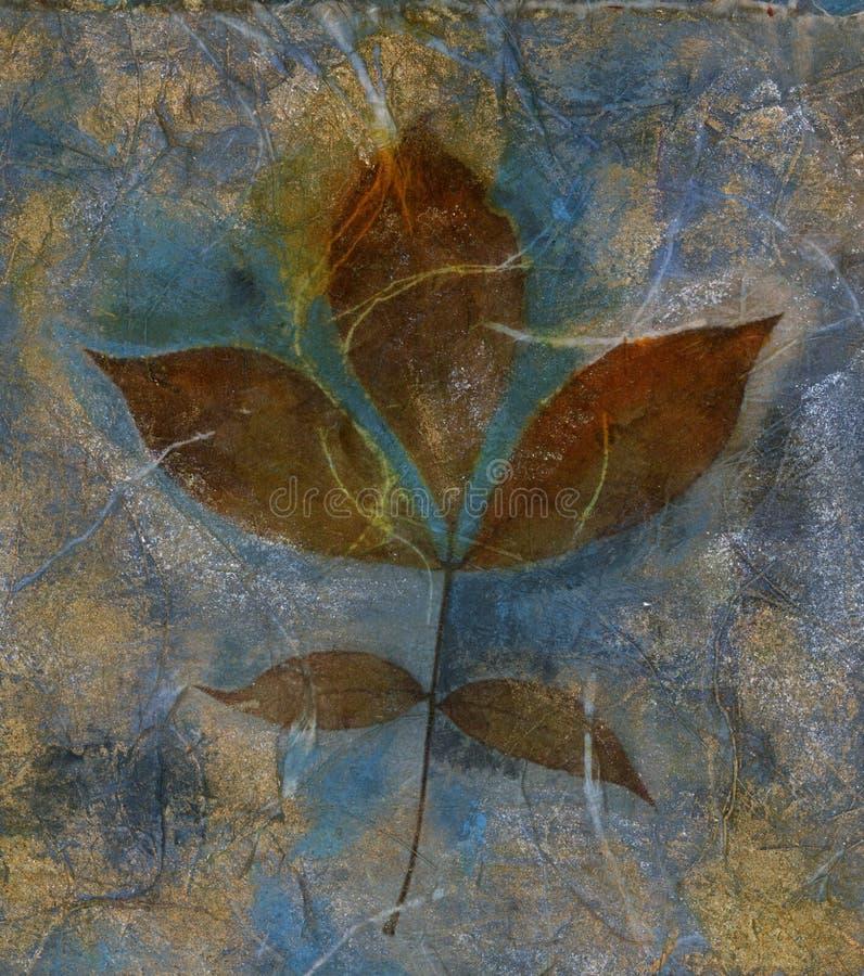 środek liścia mieszane obrazy stock