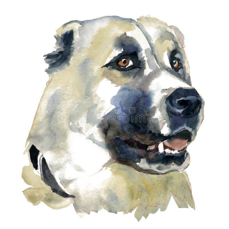 Środkowy azjatykci pasterski pies royalty ilustracja