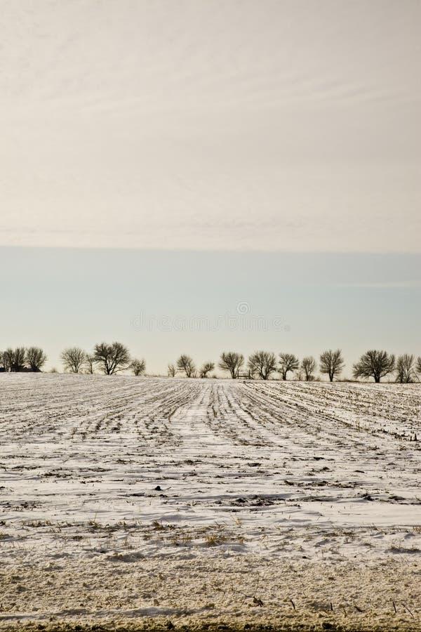 Środkowy zachód krajobrazowa zimy. obraz royalty free
