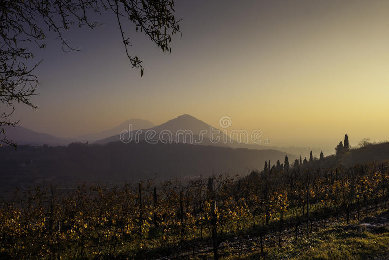Download Środkowy Zima Zmierzch Z Lekką Mgłą Zdjęcie Stock - Obraz złożonej z mgła, zmierzch: 42526006