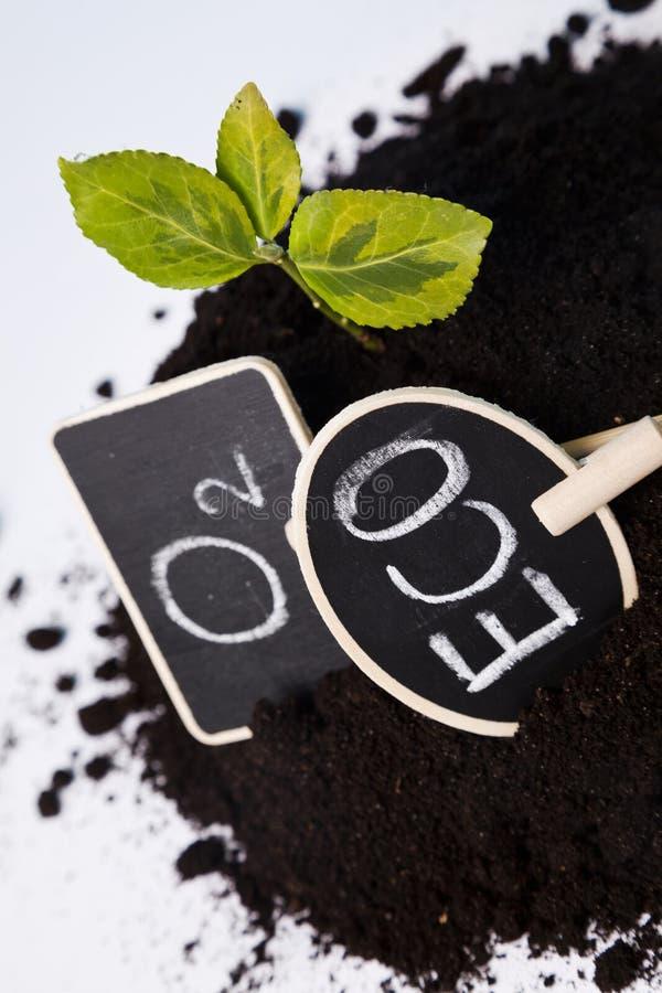 Środowiskowy życzliwy ogrodnictwo fotografia stock