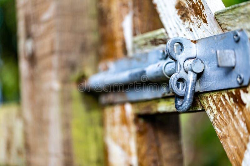 Śruba na drewnianej bramie ogrodowej fotografia royalty free