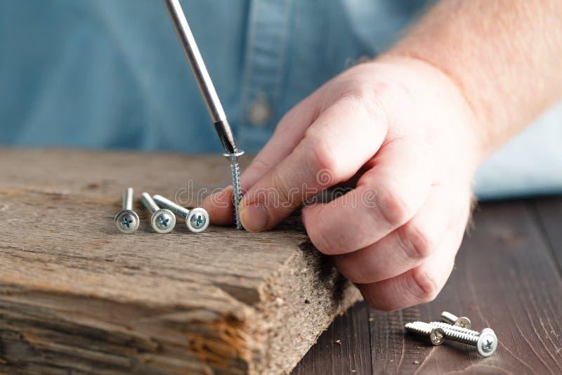 Śrubuje śrubującego w kawałek drewno obraz stock