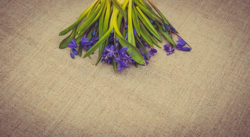 Świąteczna Wielkanocna karta z wiosna kwiatami fotografia stock