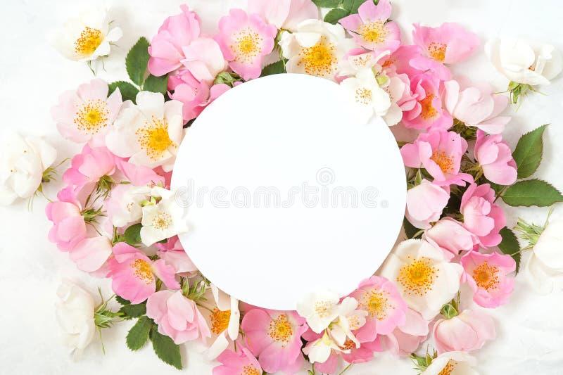 Świąteczna zaproszenie karta z piękną kwiecistą granicą na białym textured tle obraz stock