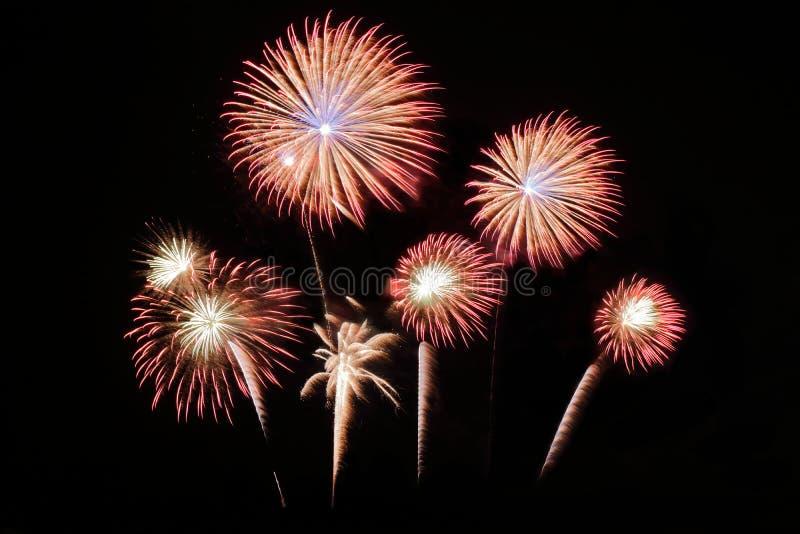 Świąteczni kolorowi fajerwerki na nocnego nieba tle Uroczysty wakacje zdjęcie stock