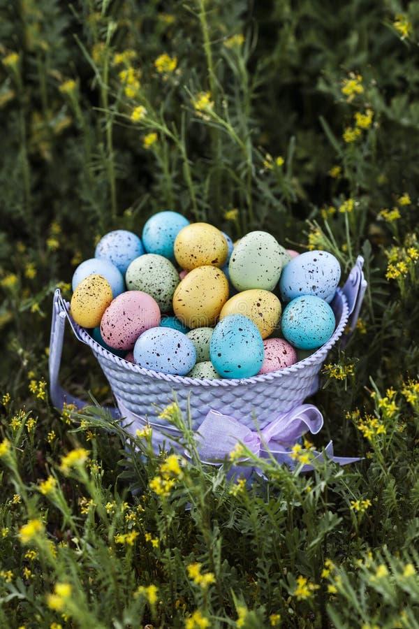 Świąteczni Wielkanocni jajka zbierający w purpurowym wiadrze, Wielkanocny świętowanie obraz stock
