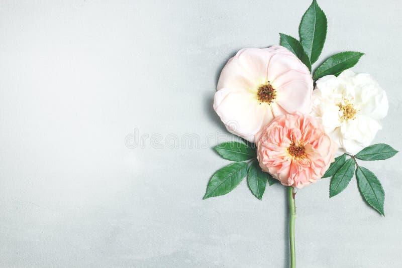 Świąteczny kwiatu skład na szarym tle Odgórny widok overhead fotografia royalty free