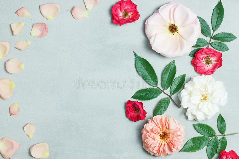 Świąteczny kwiatu skład na szarym tle Odgórny widok overhead zdjęcie royalty free