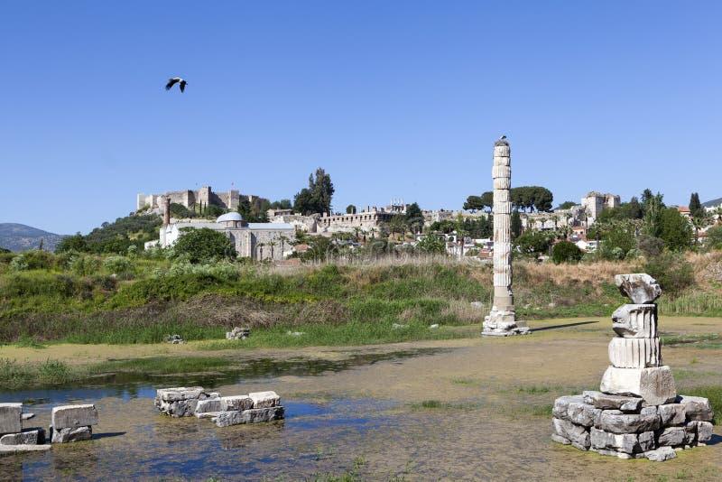 Świątynia artemis Selcuk indyk zdjęcia royalty free