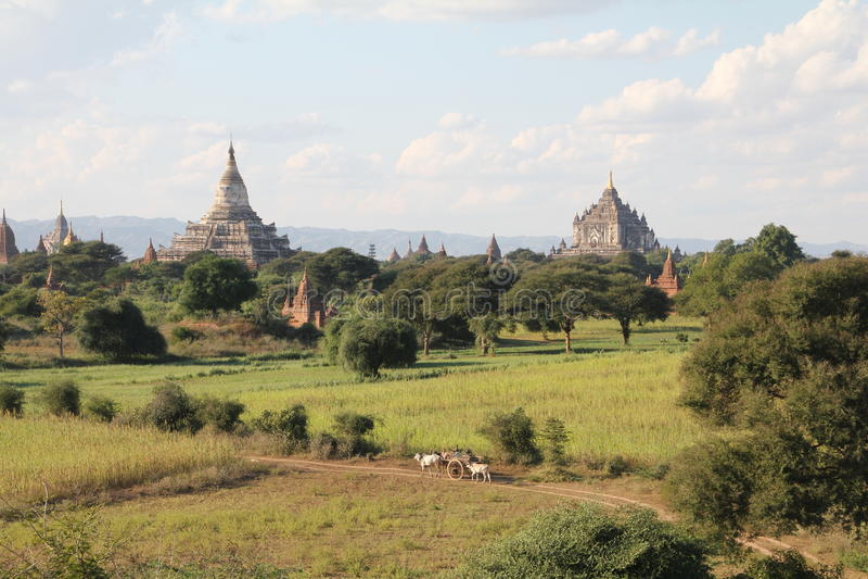 Świątynia przy Bagan | Myanmar obrazy royalty free