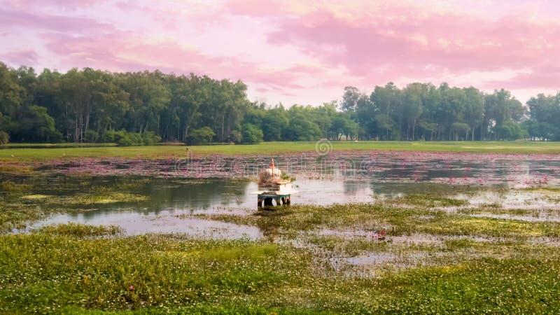 Świątynia zanurzał w jeziorze z udziałami lotosowi kwiaty obrazy royalty free