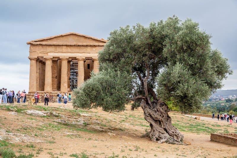 Świątynia zgoda Agrigento fotografia royalty free
