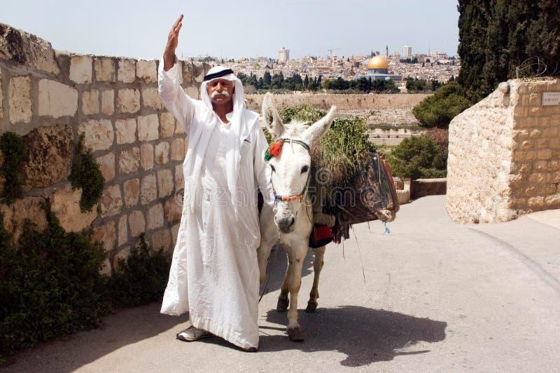 Świątynna góra i kopuła skała w Jerozolimski Izrael obrazy royalty free